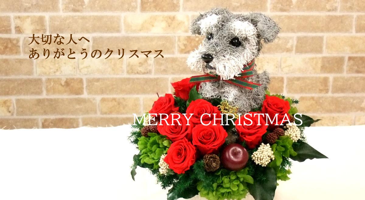 クリスマス2020 犬好き猫好きの人のためのクリスマスプレゼント