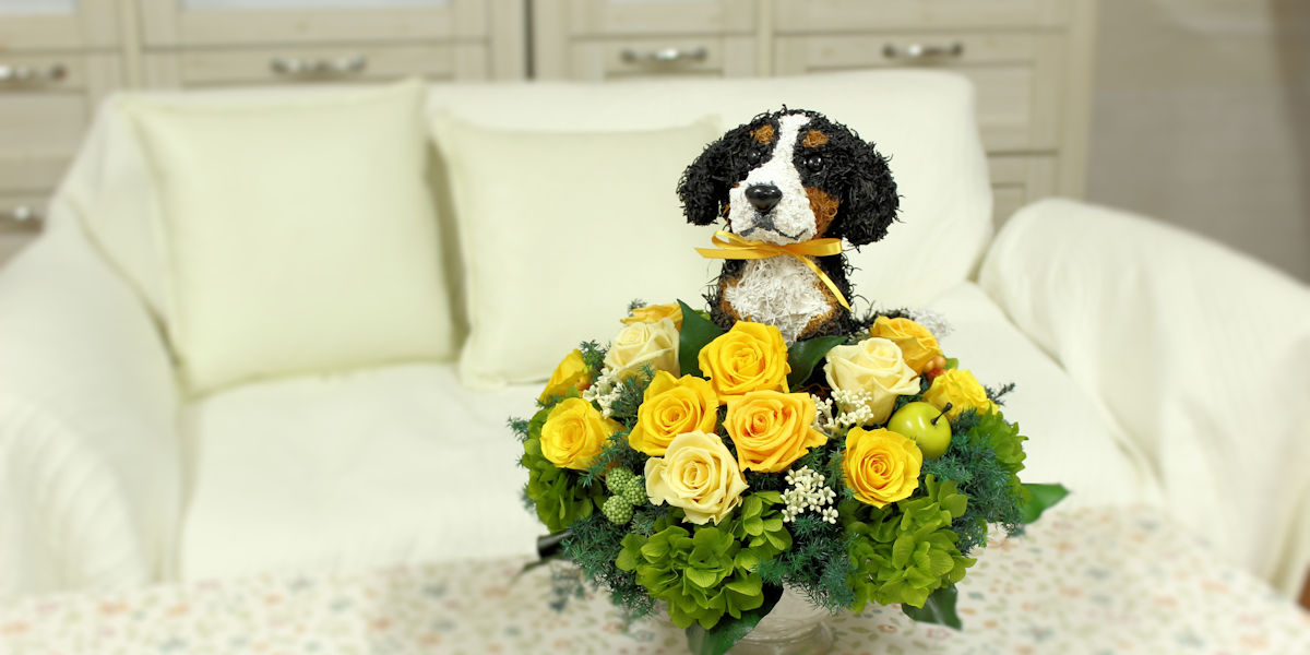 バーニーズマウンテンドッグ,犬花,犬好きの人が喜ぶプレゼント,プリザーブドフラワー犬,犬フラワーギフト販売