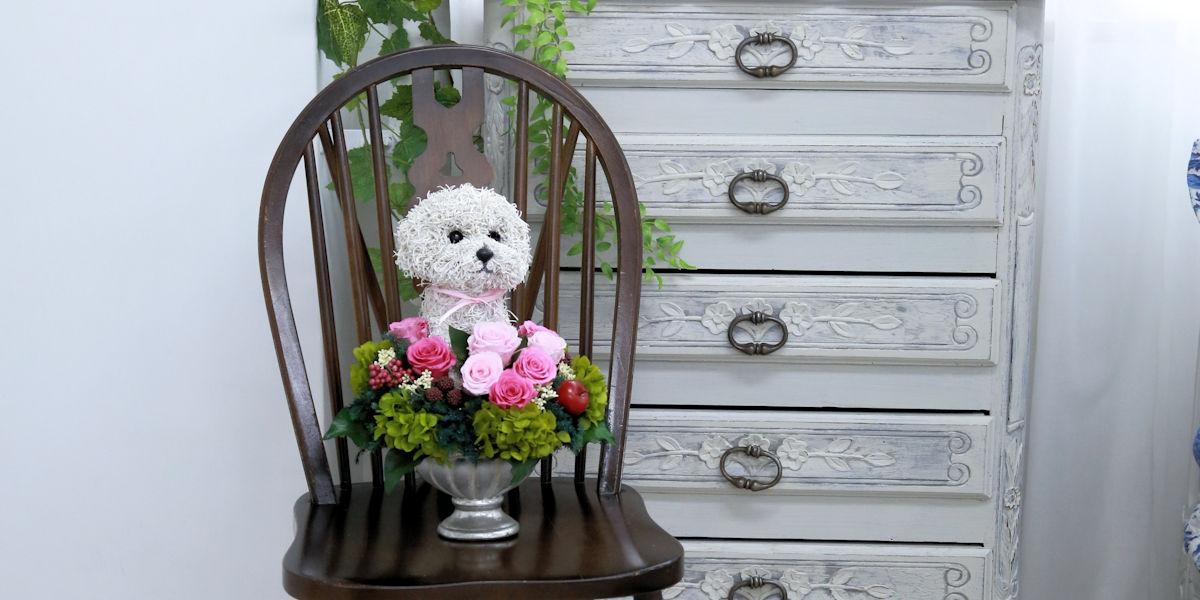 プリザーブドフラワー犬,ビションフリーゼ,犬好きの人が喜ぶプレゼント,フラワーギフト販売