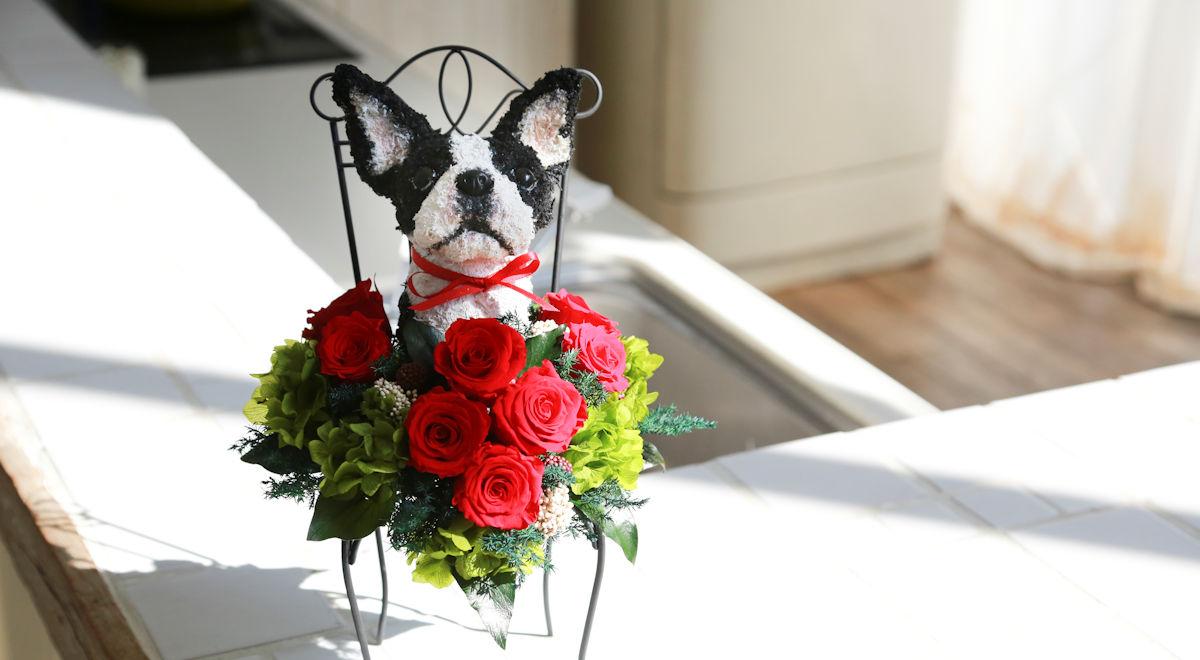プリザーブドフラワー犬,ボストンテリア,犬フラワーギフト販売