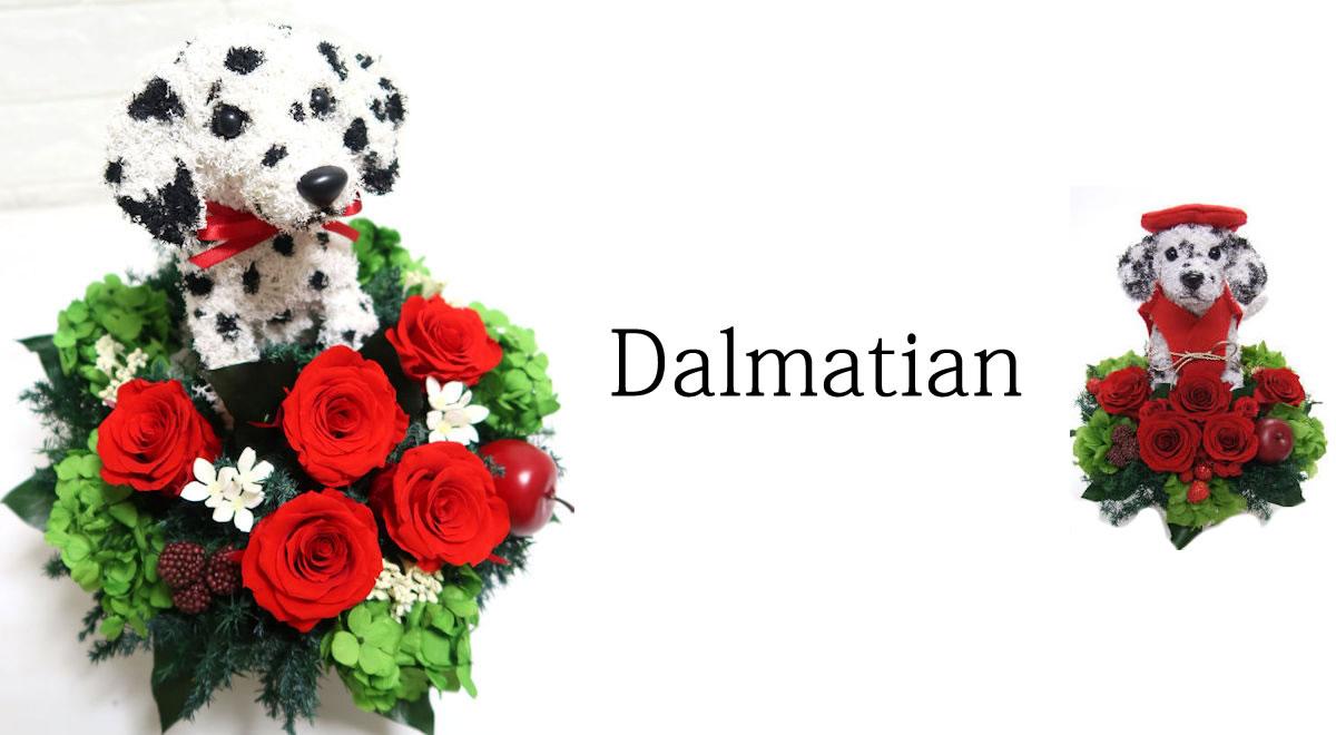 ダルメシアン 犬 プリザーブドフラワー