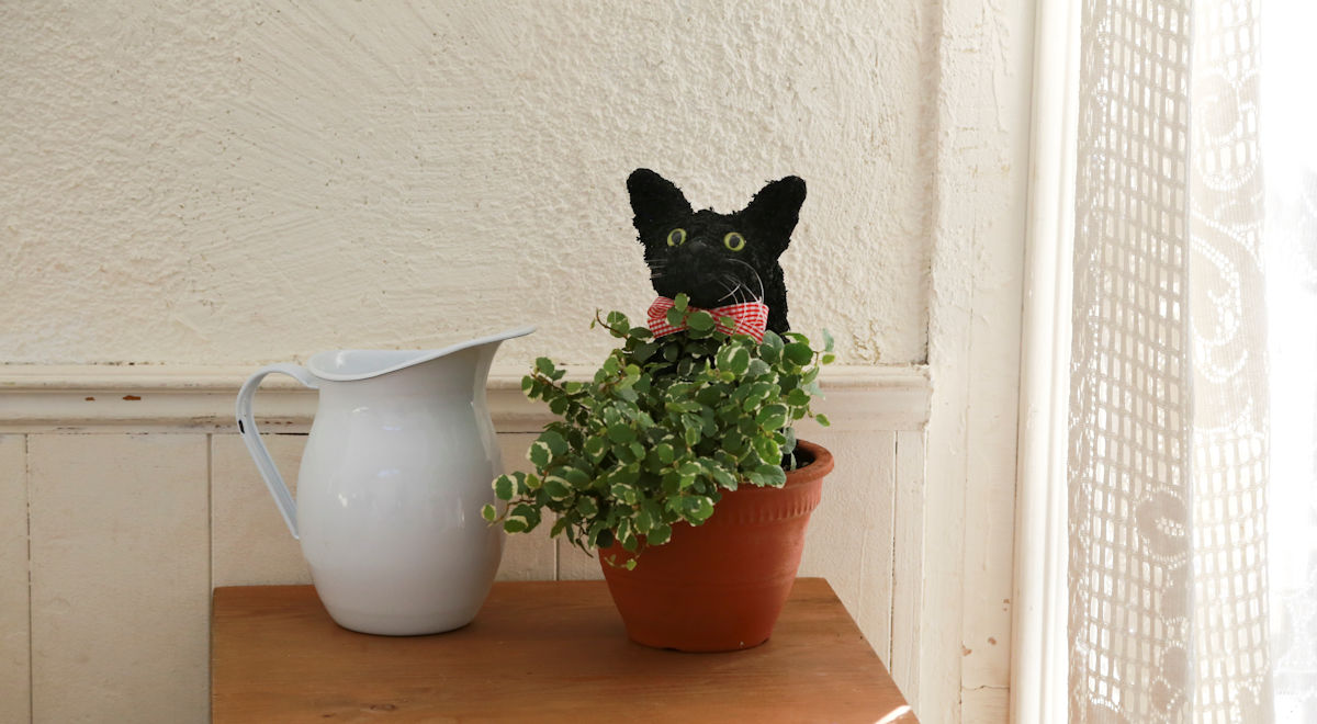 プリザーブドフラワー猫,黒猫,黒猫トピアリー鉢植え,猫好きプレゼント,黒猫グッズ,猫フラワーギフト販売