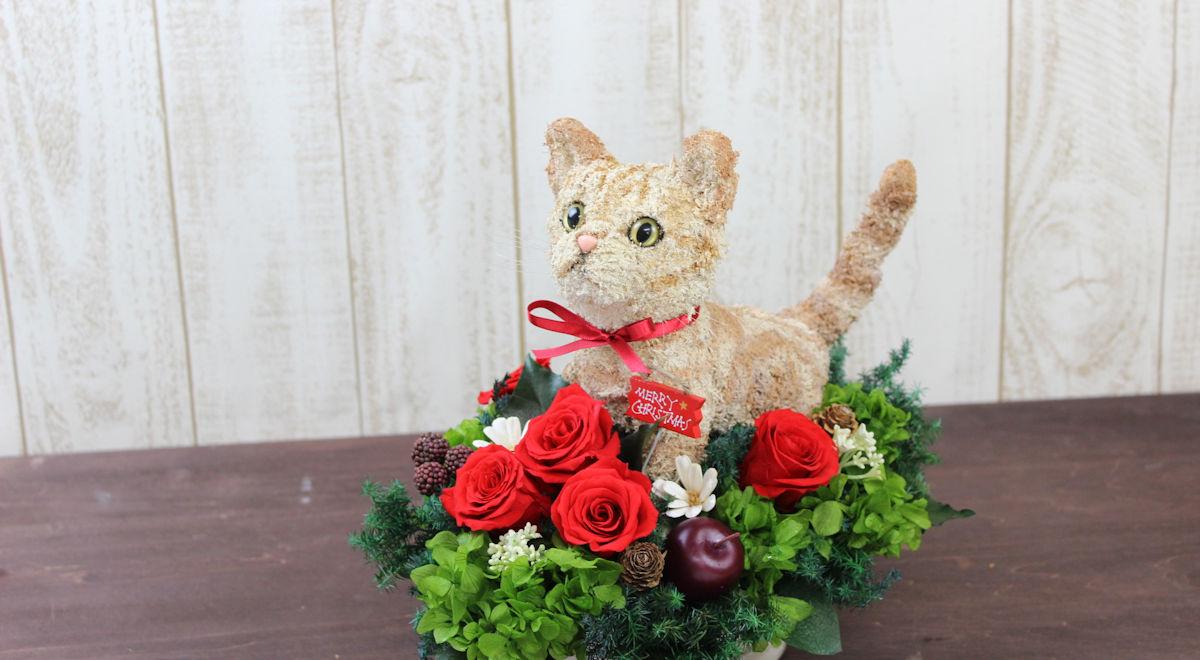 プリザーブドフラワー猫,マンチカン,猫好きプレゼント,マンチカングッズ,猫フラワーギフト販売