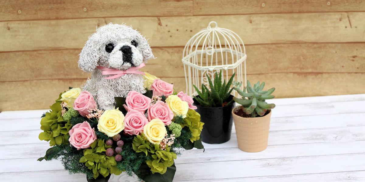 ペキニーズ,プリザーブドフラワー犬,犬好きの人が喜ぶプレゼント,犬フラワーギフト販売