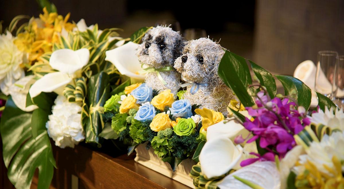 犬好きの人の結婚式,ウェディング ペット,猫好きウェディング,フラワーギフト販売