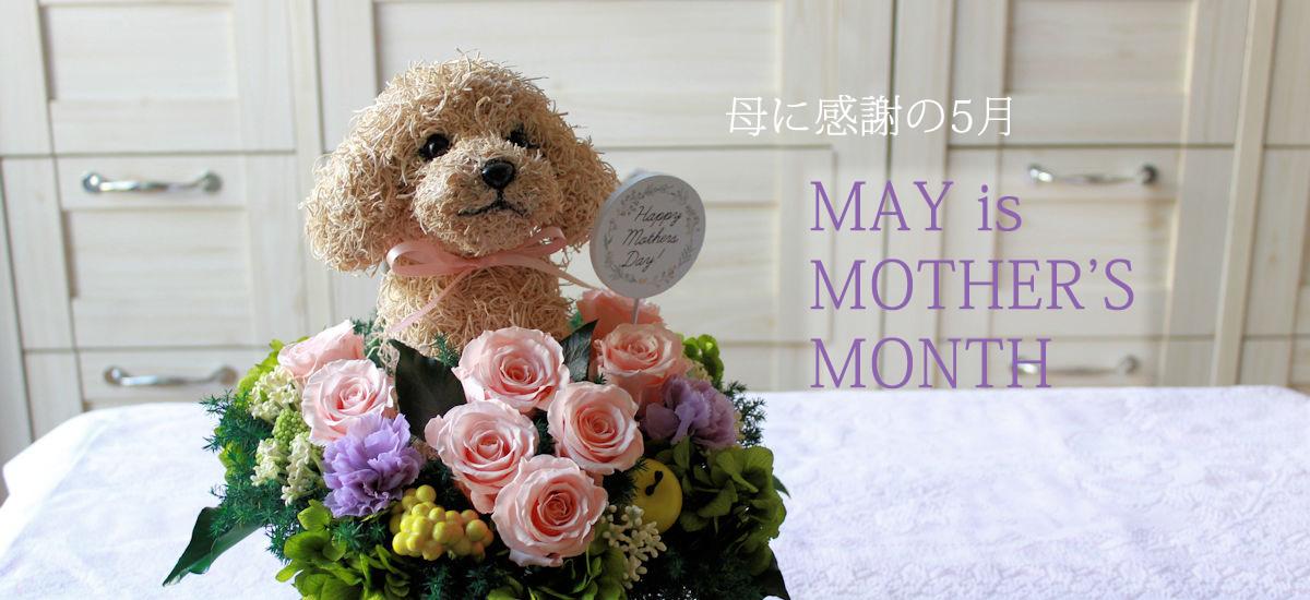 母の日フラワーギフト 犬花 犬猫