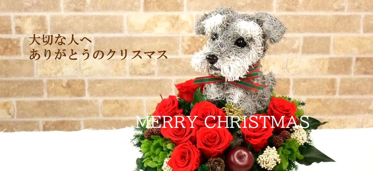 クリスマスプレゼント 犬好き 猫好き