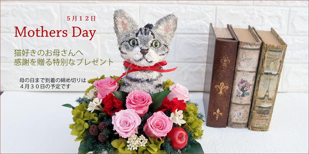 sitetop-母の日猫.jpg