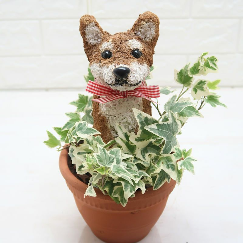 柴犬 トピアリー