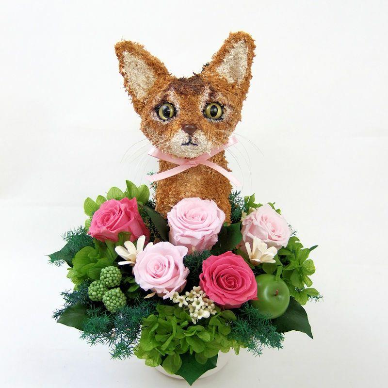 猫花 アビシニアン プリザーブドフラワーアレンジ