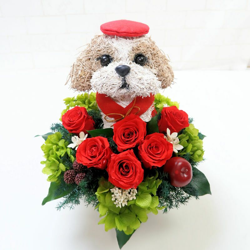 愛犬家還暦祝い シーズー